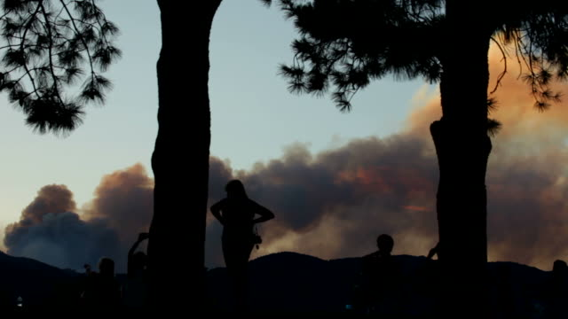 hd video forest fire and people colorado springs - canyon stock videos and b-roll footage