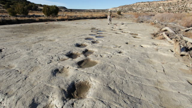 hd video hiker and dinosaur tracksite colorado - footprint stock videos & royalty-free footage