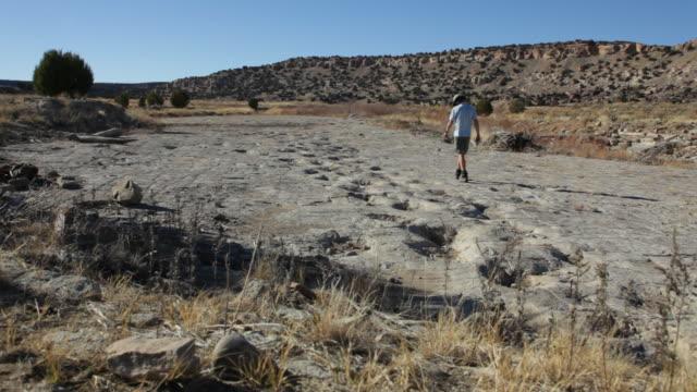 hd video hiker and jurassic dinosaur tracksite colorado - jurassic stock videos & royalty-free footage