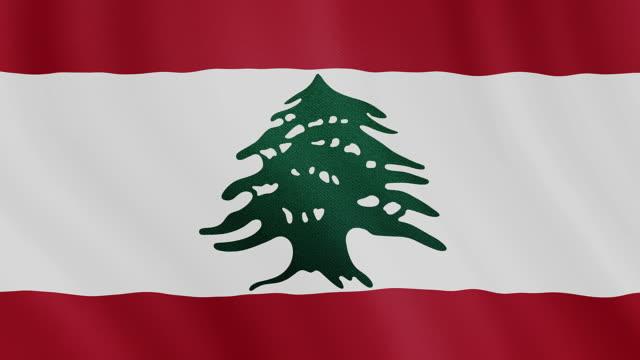vídeos de stock, filmes e b-roll de vídeos 4 k : acenando a bandeira libanesa - elemento de desenho