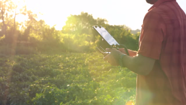 4K vidéo homme agriculteur pilote grâce au contrôleur de Drone au coucher du soleil