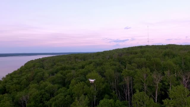 video of a drone flying over a wooded area - wilderness stock videos & royalty-free footage