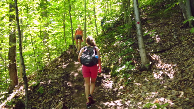 video of a family doing hiking - city break stock videos & royalty-free footage