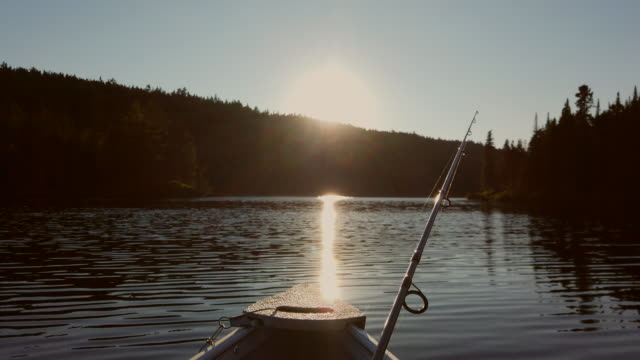 video of a fishing lake at sunset. - fishing rod stock videos & royalty-free footage