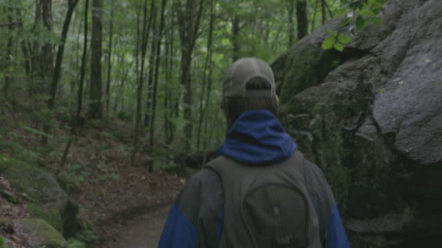 4k video of a man hiker walking and exploring the forest on a rainy day - following stock videos & royalty-free footage