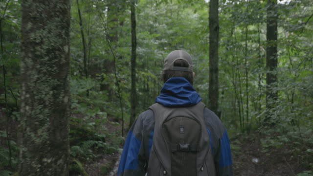 4k video of a man hiker walking and exploring the forest on a rainy day - boot stock videos & royalty-free footage