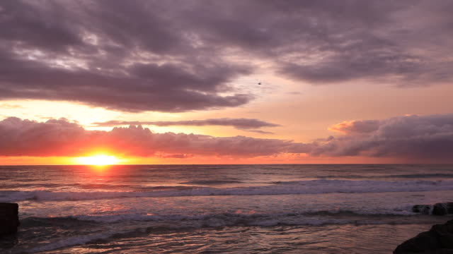 video of a vibrant orange and yellow sunrise over the ocean with waves , a surfer and birds flying - horizon over water stock-videos und b-roll-filmmaterial