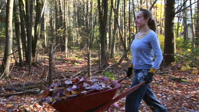 video of a woman cleaning her yard. - carrying stock videos & royalty-free footage