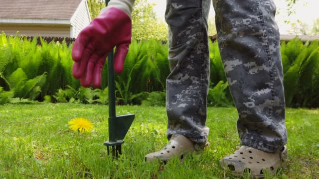 4k video of a woman pulling out weeds - weeding stock videos & royalty-free footage