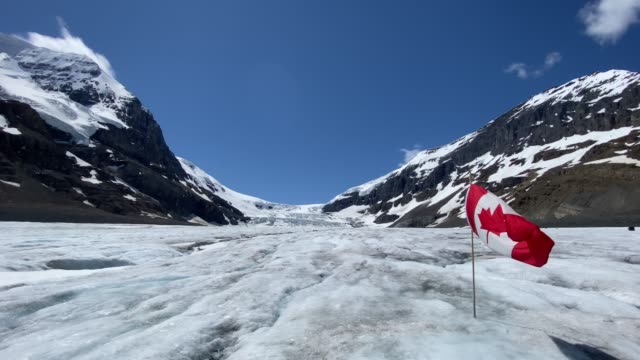 4k video of athabasca glacier, columbia icefield in the jasper national park - bandiera del canada video stock e b–roll