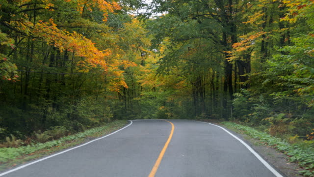 4k pov video of car driving on a mountain forest road in autumn, quebec, canada - car point of view stock videos and b-roll footage