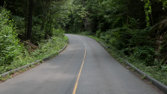 4k pov video of car driving on a mountain forest road, quebec, canada - point of view stock videos & royalty-free footage
