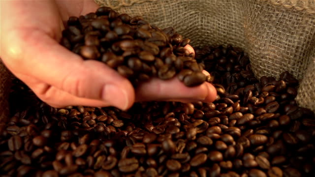 Video of checking coffee beans in real slow motion