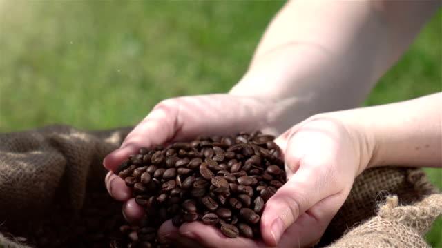 ビデオ請求のコーヒー豆で本物のスローモーション - コーヒー豆点の映像素材/bロール