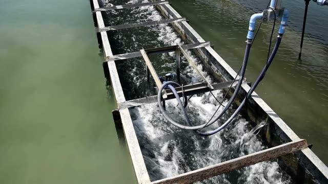 浄水場の浄水タンク プロセスのビデオ