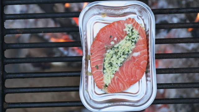 4k video of cooking salmon on bonfire in camping - aluminum sheet stock videos and b-roll footage