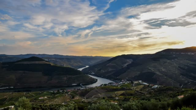 video of douro valley at sunset - televisione a ultra alta definizione video stock e b–roll
