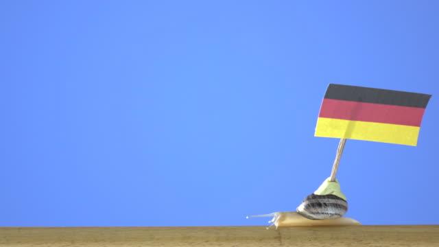 uhd video garten schnecke die deutsche flagge - halten stock-videos und b-roll-filmmaterial