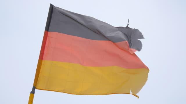 video der deutschen flagge in 4 k - ausgefranst stock-videos und b-roll-filmmaterial