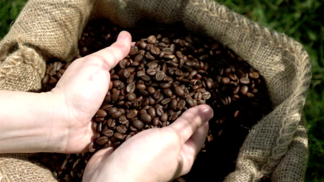 Video of grabbing coffee beans in real slow motion