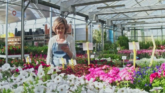 Video van volwassen vrouw eigenaar werken in kwekerij tuin