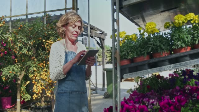 video of mature woman working with flower plants in nursery - garden center stock videos and b-roll footage