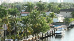 Video of Miami Residential Neighborhood Covered with Scenic Palm Trees