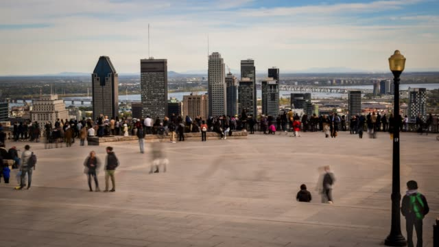 video of montreal cityscape and mount-royal viewpoint - montreal video stock e b–roll