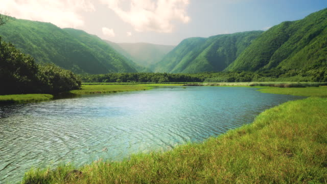 4k video of pololu valley river - big island hawaii islands stock videos & royalty-free footage