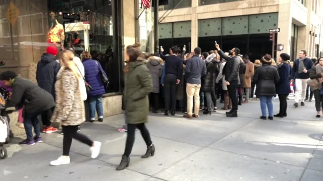 Video of Saks Fifth Avenue puppy display