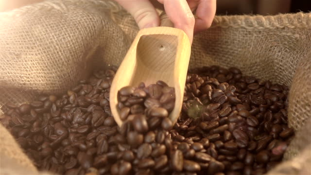 video of scooping coffee beans in real slow motion - serving scoop stock videos & royalty-free footage