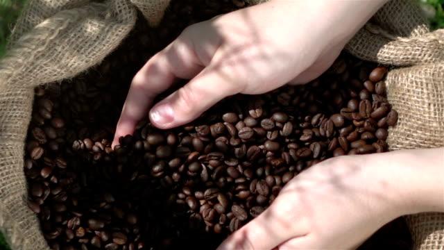コーヒー豆の 1080p スローモーション 250 fps を示すビデオ - コーヒー豆点の映像素材/bロール