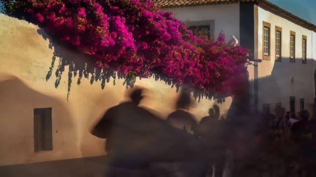 Video of street of Óbidos