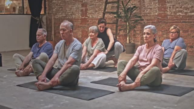 video of teacher with group of seniors exercising in yoga class - balance life stock videos and b-roll footage