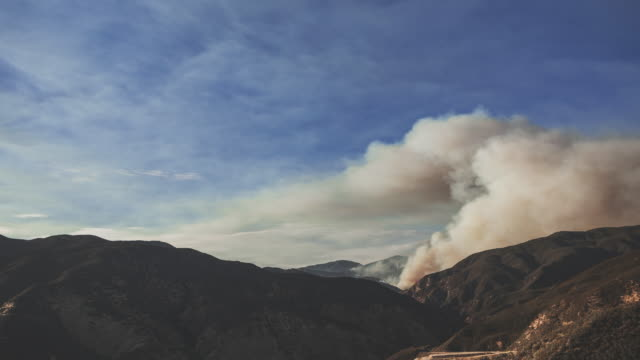 4k video of the wildfire in california tanker dropping water - pine stock videos & royalty-free footage