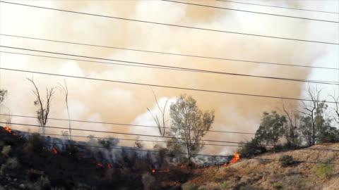 4k-video av skogsbrand i kalifornien - eldsvåda bildbanksvideor och videomaterial från bakom kulisserna