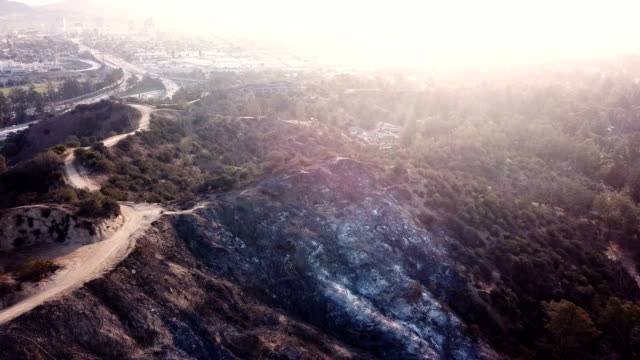 vídeos de stock e filmes b-roll de 4k video of the wildfire in california - fire natural phenomenon