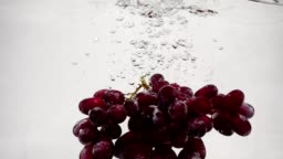 Video red grapes in slow motion. Bunch of ripe grapes are immersed in water with bubbles.