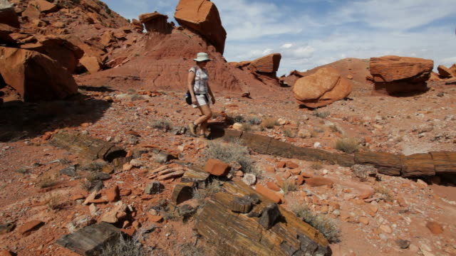 HD video woman hikes Utah's Wolverine petrified forest