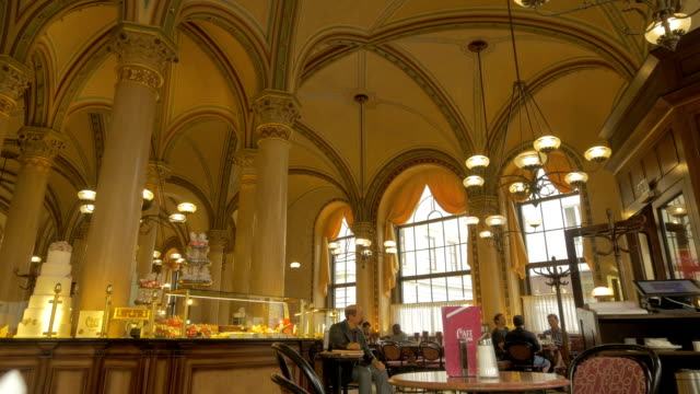 vienna cafe interior - wien stock-videos und b-roll-filmmaterial