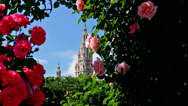 vienna town hall in spring - vienna austria stock videos & royalty-free footage