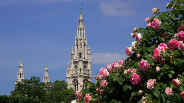vienna town hall - vienna city hall stock videos & royalty-free footage