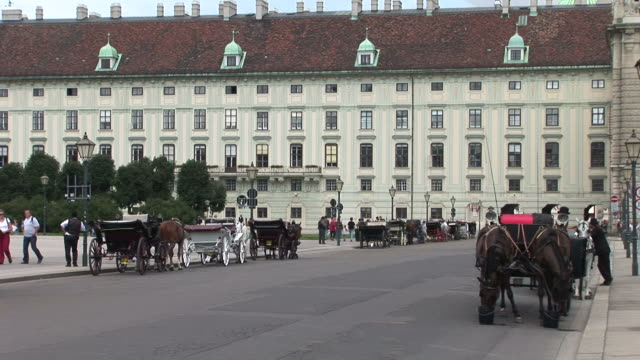 viennahorse carriages in vienna austria - austrian culture stock videos & royalty-free footage