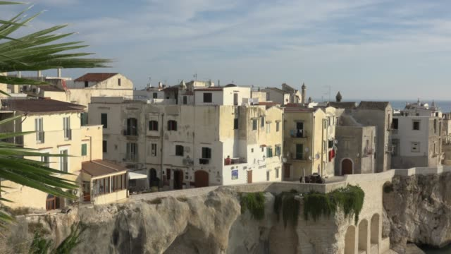 PAN / Vieste town on stunning cape over the Adriatic sea with San Francesco church