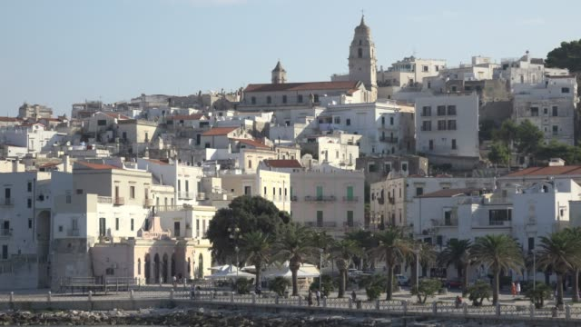 vieste town with promenade and cathedral over the adriatic sea - adriatic sea stock videos & royalty-free footage