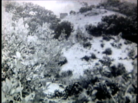 stockvideo's en b-roll-footage met viet cong engaged in battle during the vietnam war / vietnam - 1964