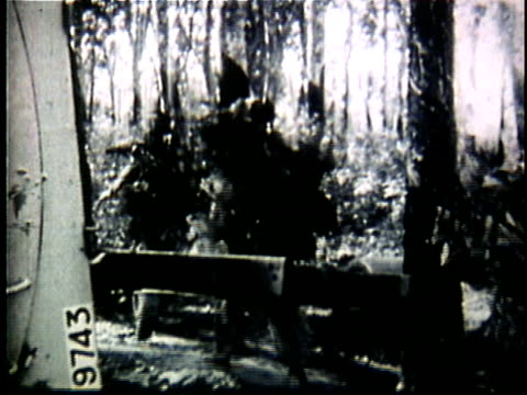 vídeos de stock, filmes e b-roll de viet cong soldiers engaged in jungle combat / vietnam - 1964