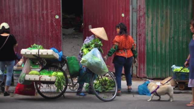vietnam vegetables street market at hanoi - bancarella video stock e b–roll