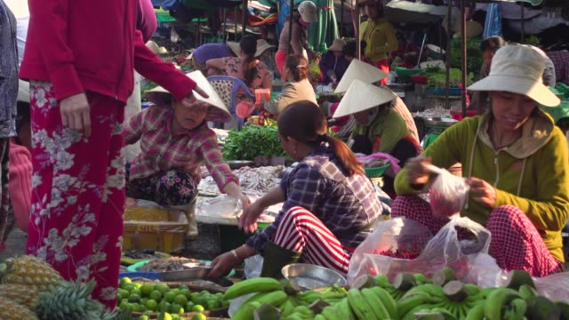 vietnam vegetables street market. women with traditional clothing and conical hat working sitting on the floor - traditional clothing stock videos & royalty-free footage