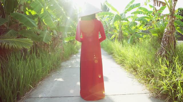 vietnamese lady in sunlight on plantation walkway vietnam - 赤のドレス点の映像素材/bロール